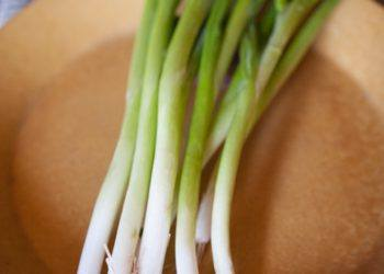 Green Onions on plate
