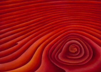 """""""red"""" painting by Mary Jarvis"""