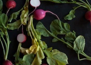 Radishes Cut in half