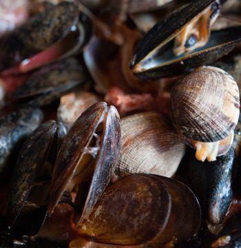 MusselswithToms&Chorizo